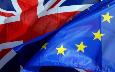 Uni Eropa mengeluarkan persyaratan bagi perundingan dagang dengan Inggris - ảnh 1