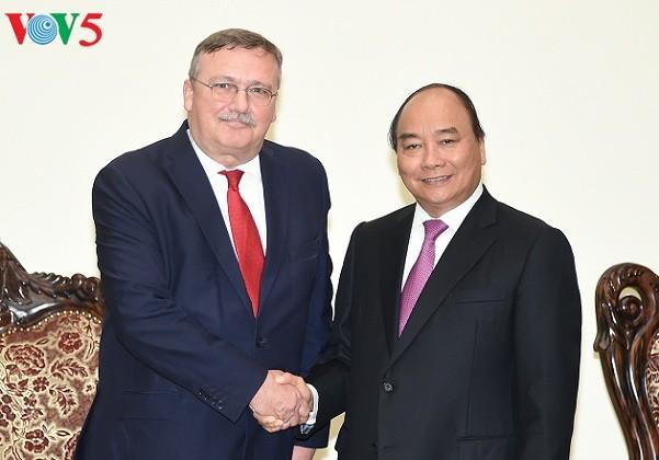 PM Vietnam, Nguyen Xuan Phuc menerima Dubes Hungaria di Vietnam, Ory Csaba - ảnh 1