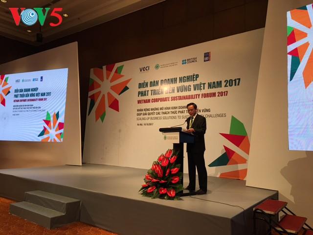 Forum badan usaha Vietnam berkembang secara berkesinambungan tahun 2017 - ảnh 1