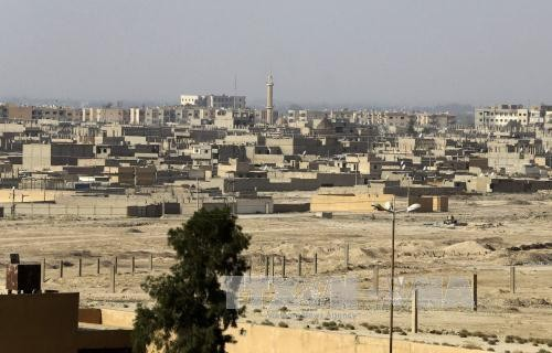 SOHR: Tentara Suriah membebaskan Kota Deir Ezzor dari tangan IS - ảnh 1