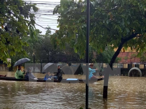 Rusia dan Jepang membantu Vietnam mengatasi akibat taufan Damrey - ảnh 1