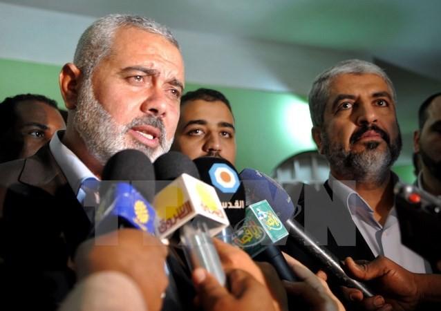 Mesir mengundang semua kubu Palestina melakukan dialog yang diperluas di Kairo - ảnh 1