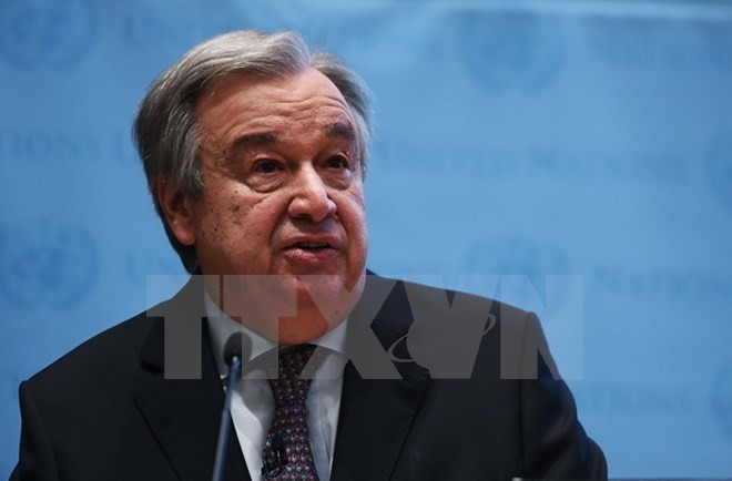 Sekjen PBB menunjukan 5 bidang aksi menghadapi perubahan iklim - ảnh 1