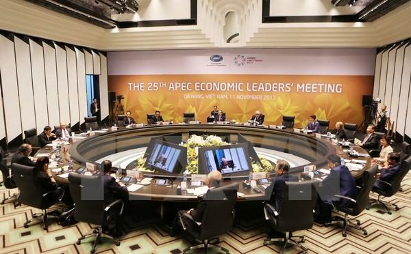 APEC 2017: Pers Arab memberikan penilaian aktif peranan negara tuan rumah Vietnam - ảnh 1
