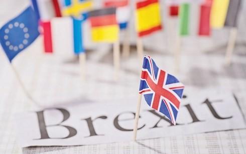 Uni Eropa bersedia memberikan perjanjian perdagangan yang paling baik kepada Inggris - ảnh 1