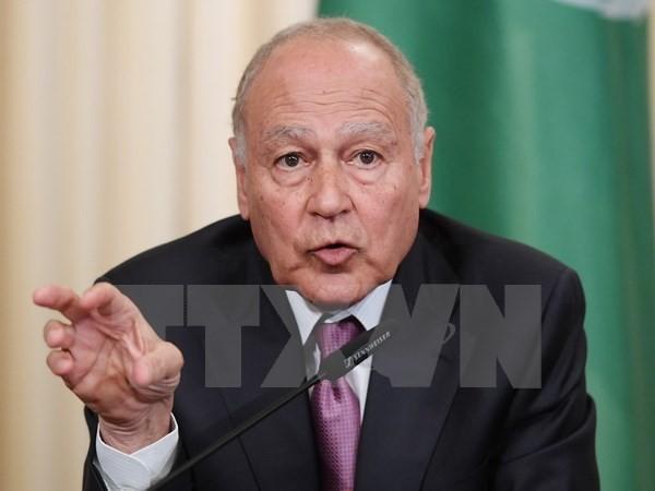 Negara-negara Arab menekankan masalah anti-terorisme - ảnh 1