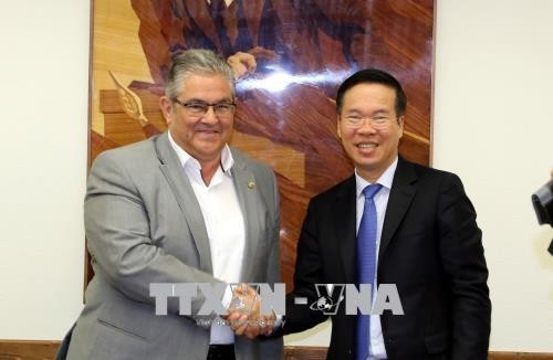 Delegasi tingkat  tinggi Partai Komunis Viet Nam melakukan kunjungan kerja di Yunani - ảnh 1