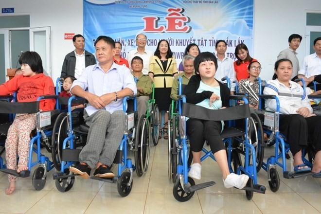 Viet Nam mendorong dan membela hak kaum disabilitas - ảnh 1