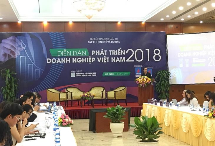 Panorama gambar badan usaha Vietnam punya banyak titik cerah - ảnh 1