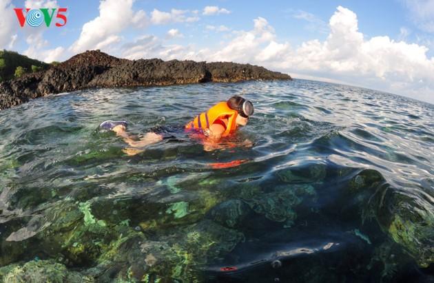 Mengusahakan solusi mengembangkan pariwisata secara berkesinambungan yang  dikaitkan dengan konservasi keanekaragaman biologi - ảnh 1
