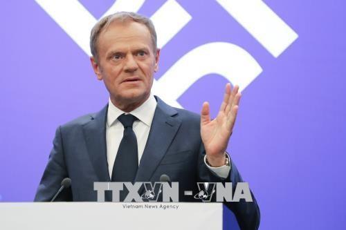 Ketua EC mengusulkan langkah-langkah membatasi kaum migran ilegal - ảnh 1