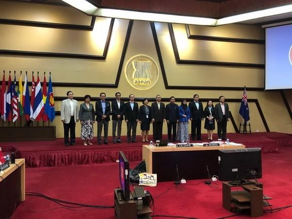 Pertemuan ke-6 Komite Kerjasama Bersama ASEAN-Selandia Baru - ảnh 1