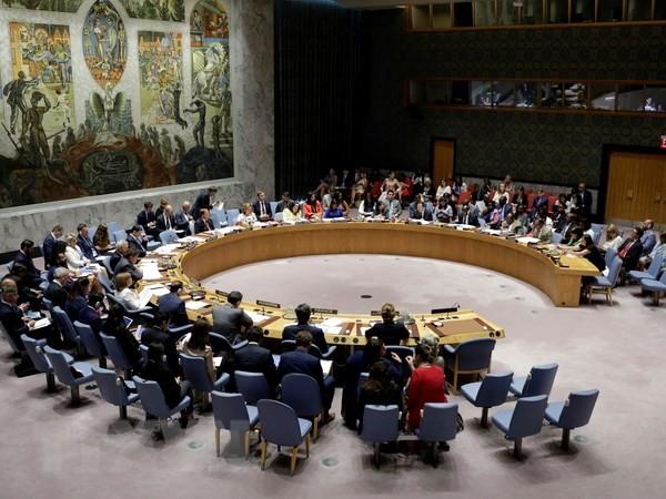DK PBB mengesahkan resolusi membela anak-anak dalam bentrokan-bentrokan - ảnh 1