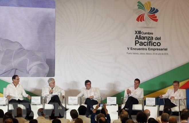 Persekutuan Pasifik berseru menentang proteksionisme - ảnh 1