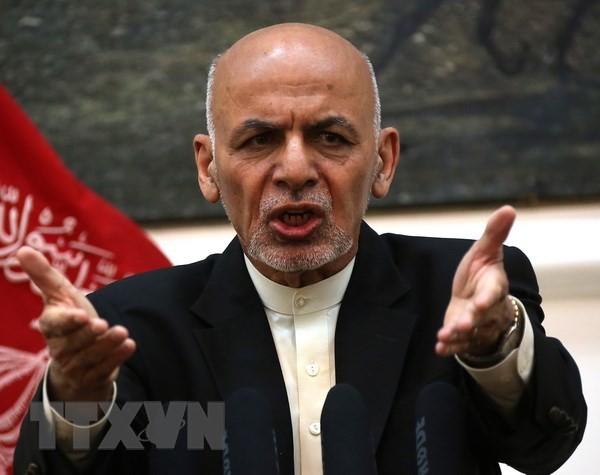 IEC mengumumkan waktu bagi pilpres Afghanistan - ảnh 1