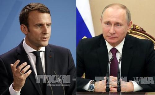 Presiden Rusia dan Perancis melakukan pembicaraan telepon tentang masalah Suriah - ảnh 1