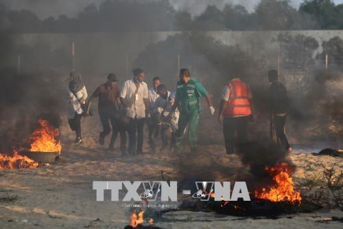 Bentrokan terus meledak kembali di Jalur Gaza sehingga menimbulkan banyak korban - ảnh 1