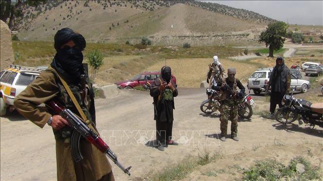 Taliban dan Afghanistan mengkonfirmasikan akan menghadiri perundingan damai di Rusia - ảnh 1