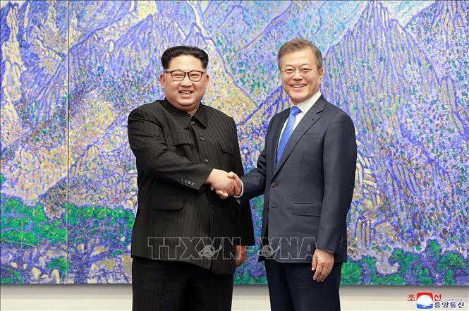 Republik Korea mendorong penyelenggaraan Pertemuan Puncak antar-Korea - ảnh 1