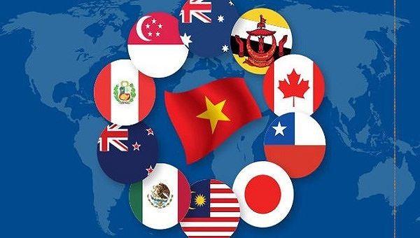 Eskpor Vietnam ke beberapa negara anggota CP TPP meningkat tinggi - ảnh 1