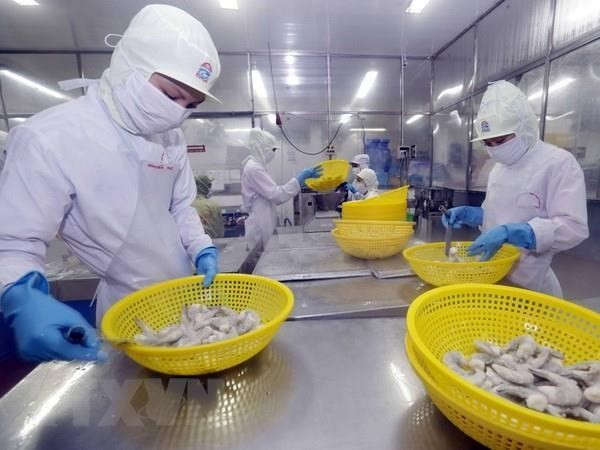 Ekspor udang berupaya mencapai  target sebesar 4,2 miliar USD - ảnh 1