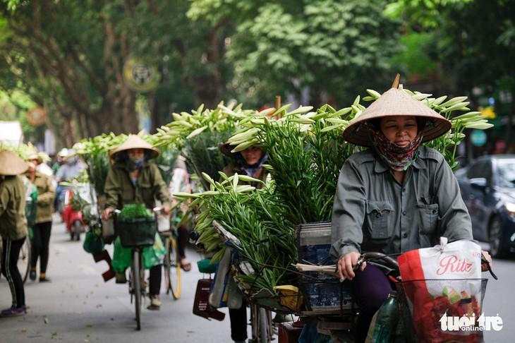 Musim bunga bakung paskah di Kota Ha Noi  - ảnh 2