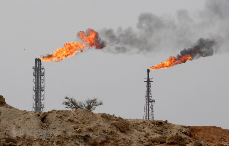 Republik Korea mulai berhenti mengimpor minyak kasar dari Iran - ảnh 1