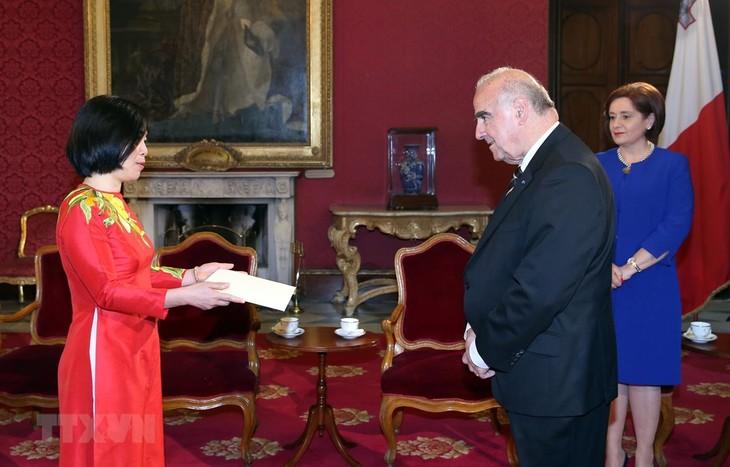 Vietnam menghargai pendorongan hubungan dengan Malta - ảnh 1