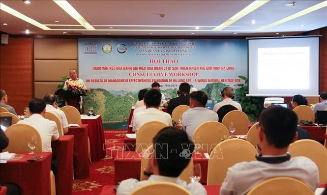 Perlu menetapkan perbatasan, memperluas dan membela dengan baik kawasan bantalan Teluk Ha Long - ảnh 1