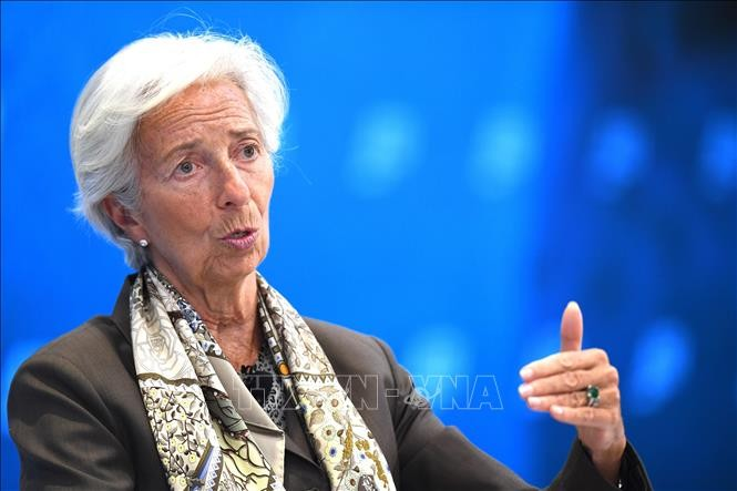 Perancis berseru kepada negara-negara Eropa supaya cepat mencari calon bagi jabatan Direktur Jenderal IMF - ảnh 1
