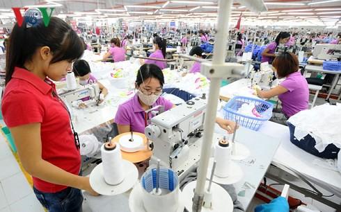 Badan-badan usaha Vietnam memanfaatkan peluang dari Perjanjian EVFTA - ảnh 1