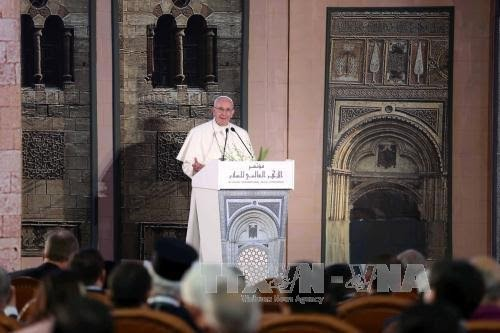 Pope's visit to Egypt highlights Christian-Muslim unity against violence - ảnh 1