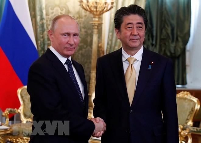 Putin, Abe reconfirm peace treaty  - ảnh 1