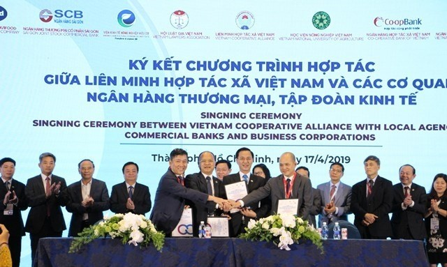 HCM City Forum promotes sustainable development of cooperatives - ảnh 1