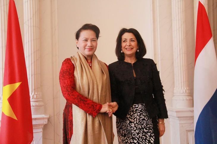 Hubungan persahabatan dan kerjasama Vietnam – Belanda sedang berkembang secara baik di semua bidang - ảnh 1