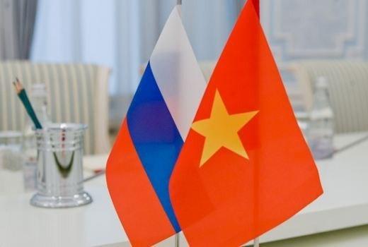 Memperingati ultah ke-28 Hari Nasional Federasi Rusia  - ảnh 1