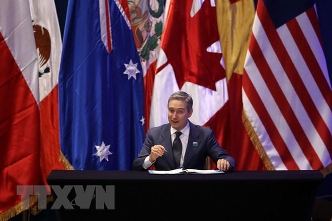 Kanada memulai kembali proses ratifikasi  CPTPP - ảnh 1