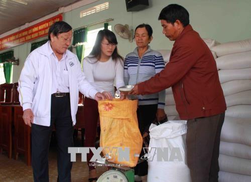 Daerah etnis minoritas  dan daerah pegunungan di kawasan Vietnam Tengah dan Tay Nguyen terus mendapat perhatikan  negara melakukan investasi yang layak - ảnh 1