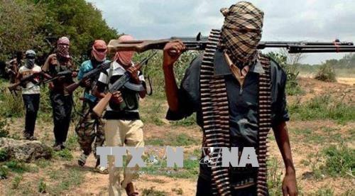 Banyak serdadu Niger tewas karena diserang oleh kelompok teroris - ảnh 1