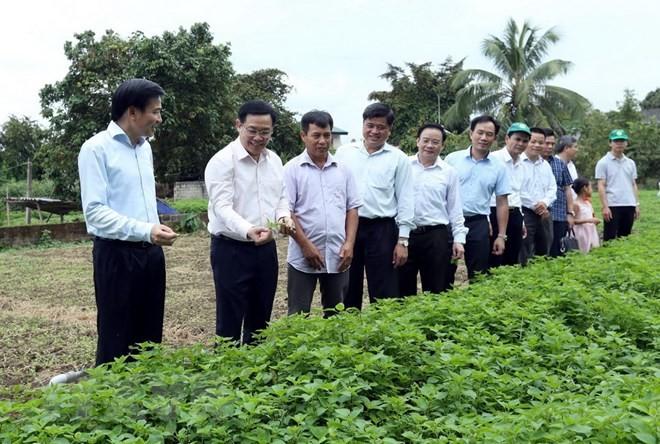 Deputi PM Vuong Dinh Hue melakukan temu kerja di Provinsi Dien Bien - ảnh 1
