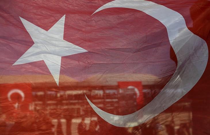 Rusia bersedia menyederhanakan visa untuk beberapa obyek warga negara Turki  - ảnh 1