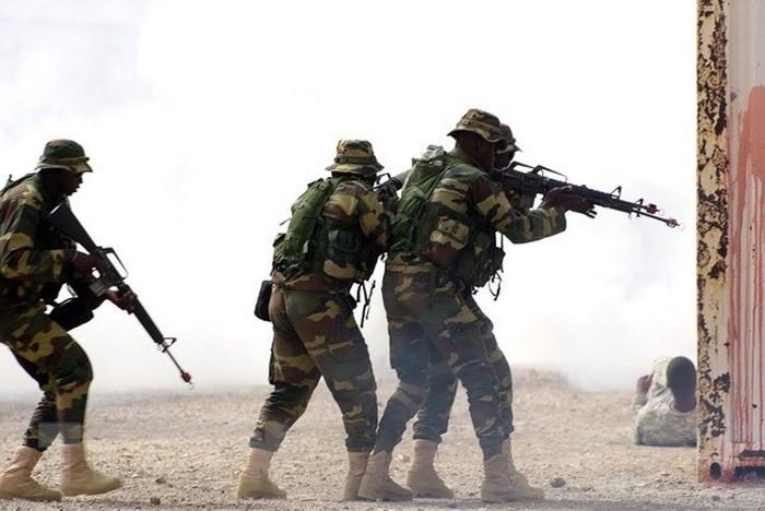 Negara-negara Afrika Timur, AS dan Uni Eropa melakukan latihan perang gabungan di Rwanda - ảnh 1