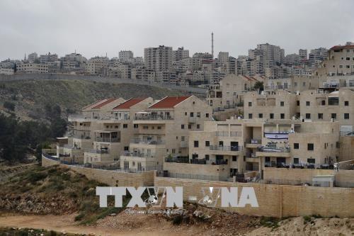 Palestina mencela rekomendasi Presiden Donald Trump menyingkirkan Jerusalem dari perundingan-perundingan - ảnh 1