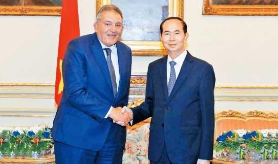 Presiden Vietnam, Tran Dai Quang mengakhiri kunjungan kenegaraan di Mesir - ảnh 1