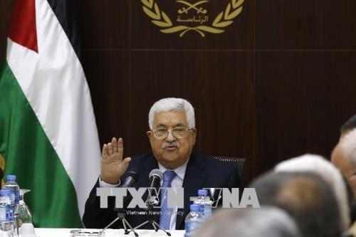 Presiden Palestina: AS sedang menyabot proses perdamaian di Timur Tengah - ảnh 1