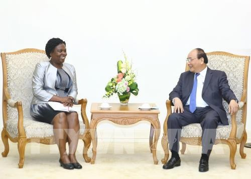 PM Vietnam, Nguyen Xuan Phuc menerima Wakil Presiden WB Urusan kawasan Asia Timur-Pasifik - ảnh 1