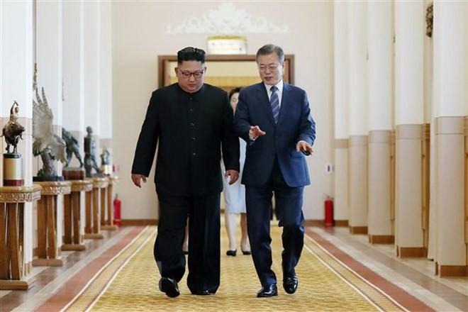 Presiden Republik Korea berseru supaya menghentikan masa 70 tahun permusuhan antara dua bagian negeri  Korea - ảnh 1