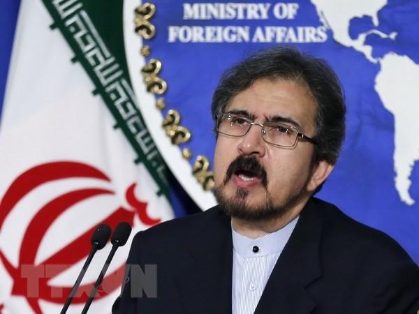 Iran dan Uni Eropa berkomitmen terus kerjasama - ảnh 1
