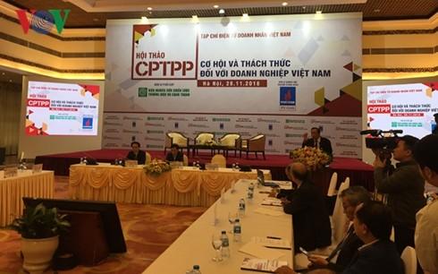 Perjanjian CPTPP – Peluang dan tantangan bagi badan-usaha Vietnam - ảnh 1