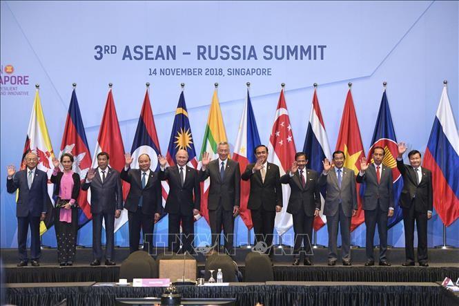 ASEAN dan Rusia melakukan kerjasama di bidang teknik digital - ảnh 1